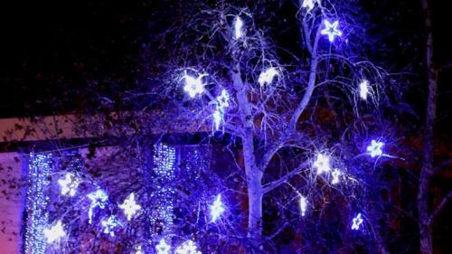 Коледна украса - град Свищов / Празнична украса